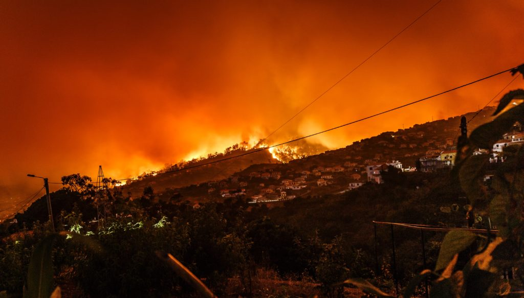 Wildfire destroying suburban community